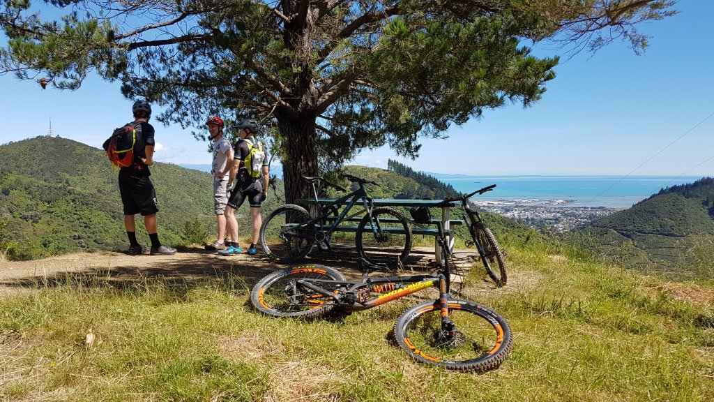 Guided mountain bike rides around Nelson